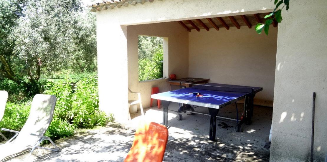 Table de ping pong et jeux de piscine